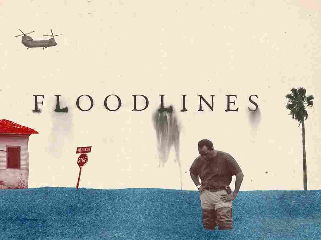 Art from the Floodlines podcast from the Atlantic.