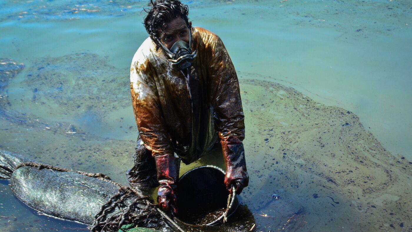 Oil Spill Threatens Unique Animals Of Mauritius – NPR