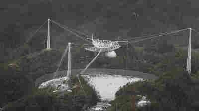 Puerto Rico's Arecibo Radio Telescope Damaged By Falling Cable