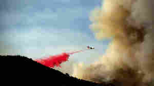 Wildfire Season Is Off To A Roaring Start In California And Colorado