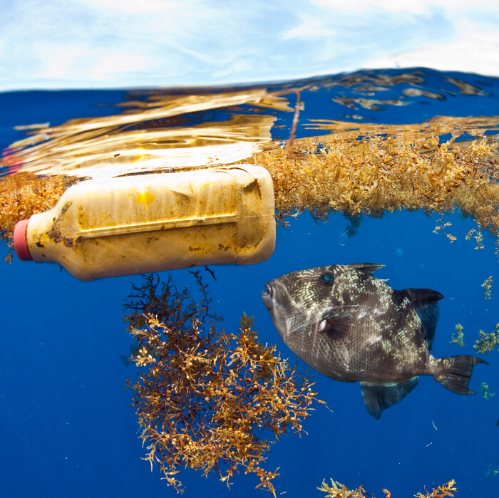 The Atlantic Is Awash With Far More Plastic Than Previously Thought, Study Finds