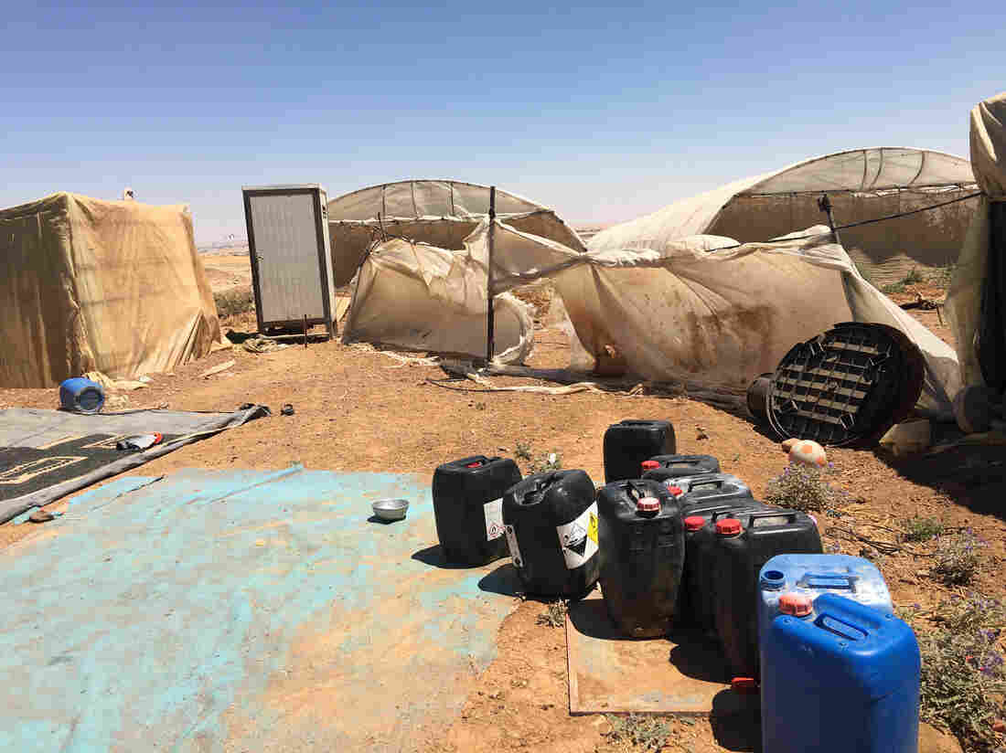 'No Hope': A Deadly Tent Fire In Jordan Leaves Syrian Refugee Farm Workers In Despair 4