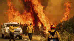 Record-Setting Blazes Continue To Rip Through Northern California