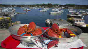 U.S. Lobster Dealers Hope To Claw Back Market Share In Europe
