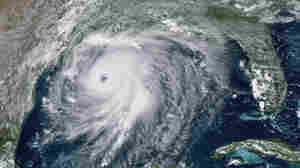 Hurricanes Like Laura Are More Likely Because Of Climate Change
