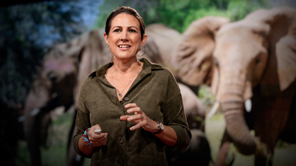 Biologist Lucy King speaks from the TED stage