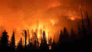 Record Heat Wave Creates 'Kiln-Like' Conditions In California