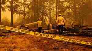 At Least 14 People Killed In West Coast Wildfires; Some 500,000 Evacuated In Oregon