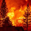 6 Ways To Get Ready For A Wildfire