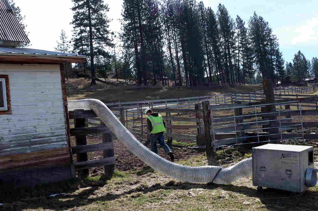 COVID-19 Stalks A Montana Town Already Grappling With Asbestos Disease 3