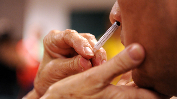 The nasal spray version of the flu vaccine contains live but weakened form of the virus. Researchers think there