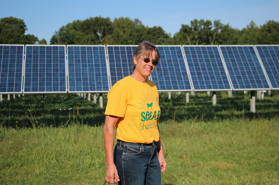 I recently saw an article about how this solar farm is going to take away food for people,
