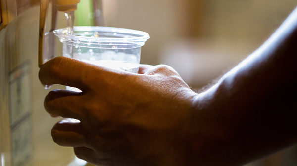 Brain cells which monitor liquid, mineral and salt levels in body, influence what types of drinks we crave when thirsty.