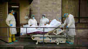 What's Coming This Winter? Here's How Many More Could Die In The Pandemic