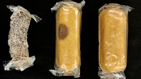 For eight years, a box of Twinkies sat in Colin Purrington