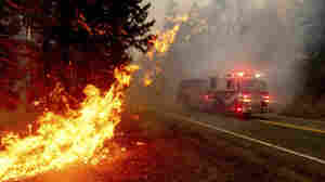 White House Reverses Decision And OKs Wildfire Aid For California