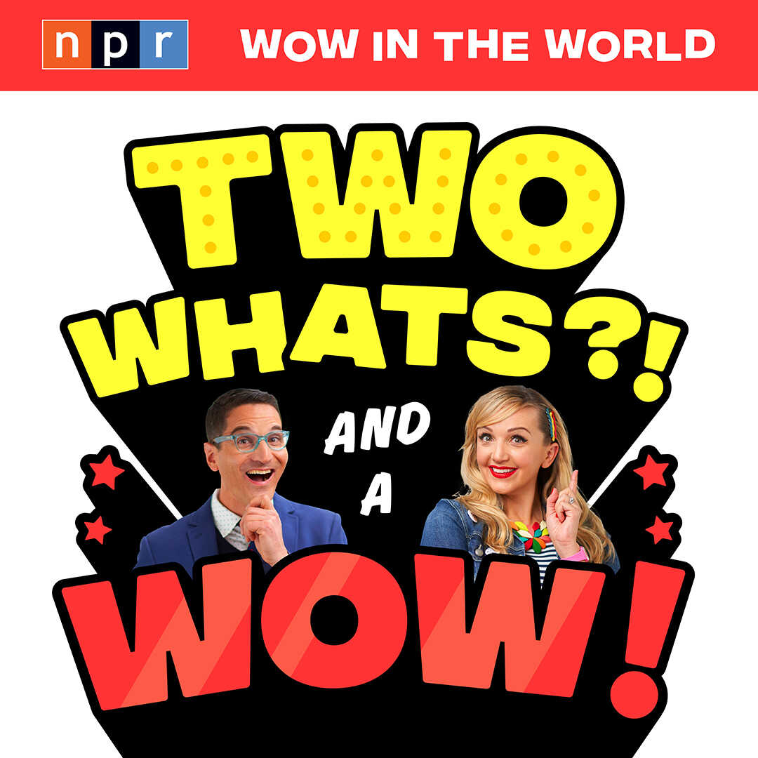 What's Mindy doing with all this food in her house and what does it have to do with the bee charging after Guy Raz?! The answer to those two questions and more in this foodie episode of Two Whats?! & A Wow!