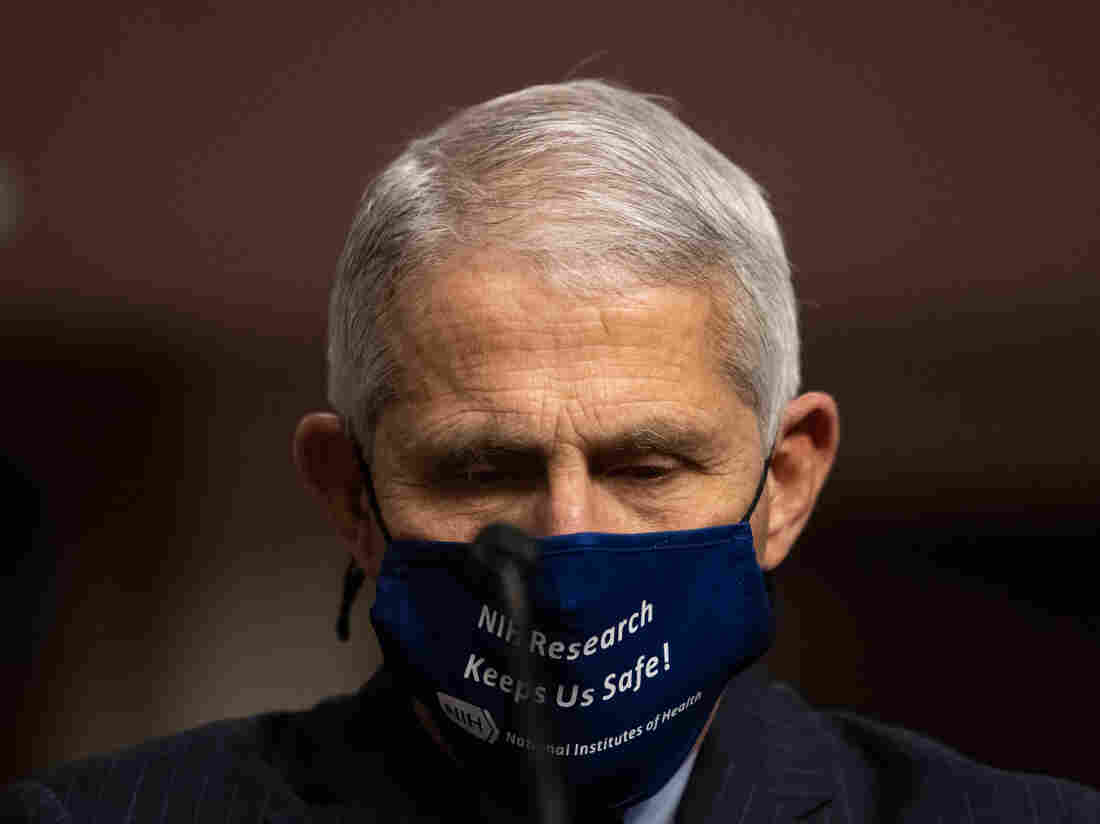 Donald Trump calls distinguished COVID-19 expert Anthony Fauci a 'disaster'
