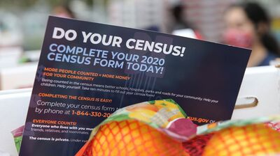 Economic Consequences Of The Census