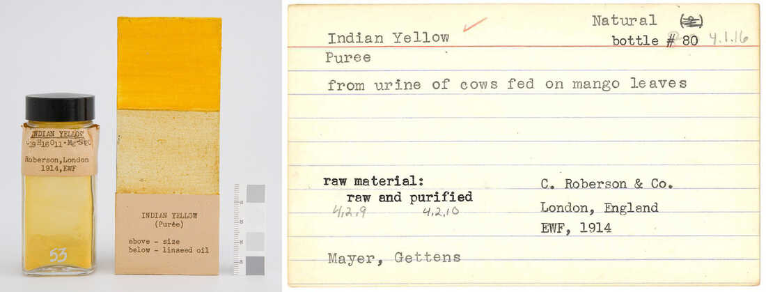 Indian Yellow in the Forbes Pigment Collection