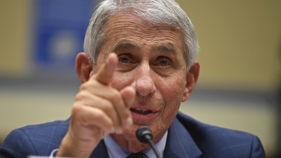 Dr. Anthony Fauci, director of the National Institute for Allergy and Infectious Diseases, testifies during a House Subcommittee hearing on the coronavirus crisis in July. (Kevin Dietsch/AP)