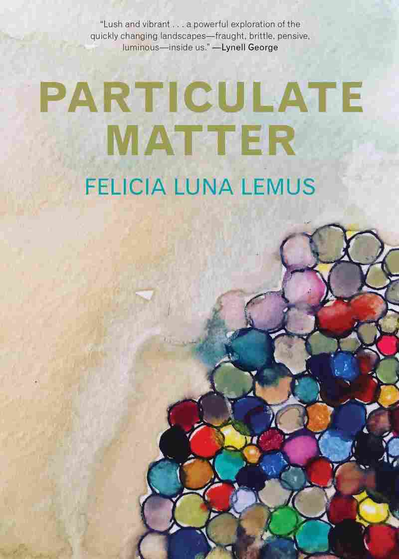 Particulate Matter, by Felicia Luna Lemus