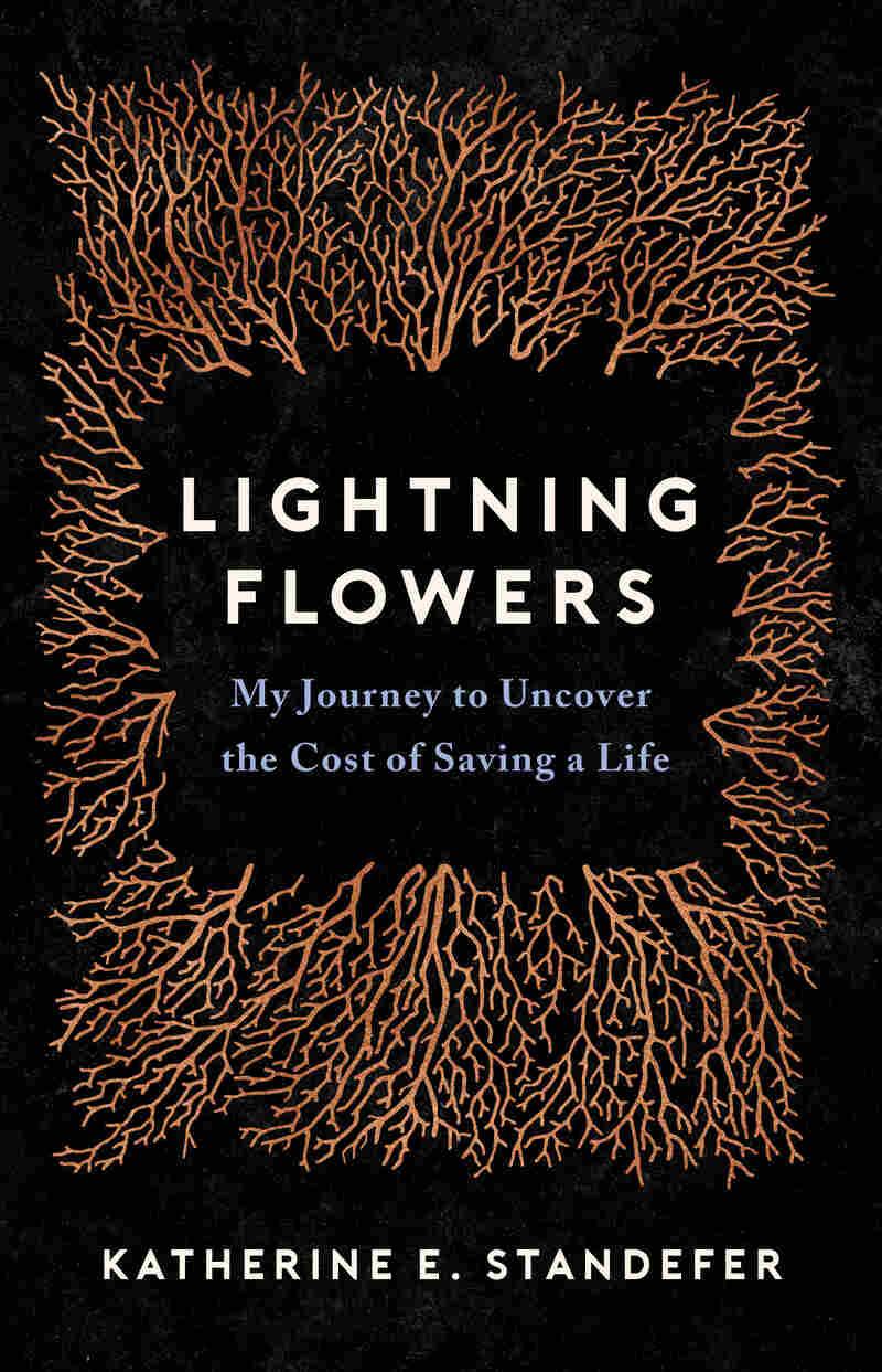 Lightning Flowers, by Katherine Standefer
