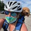 Terapia para animais de estimação pandêmicos: o que há de especial em um amigo inseto