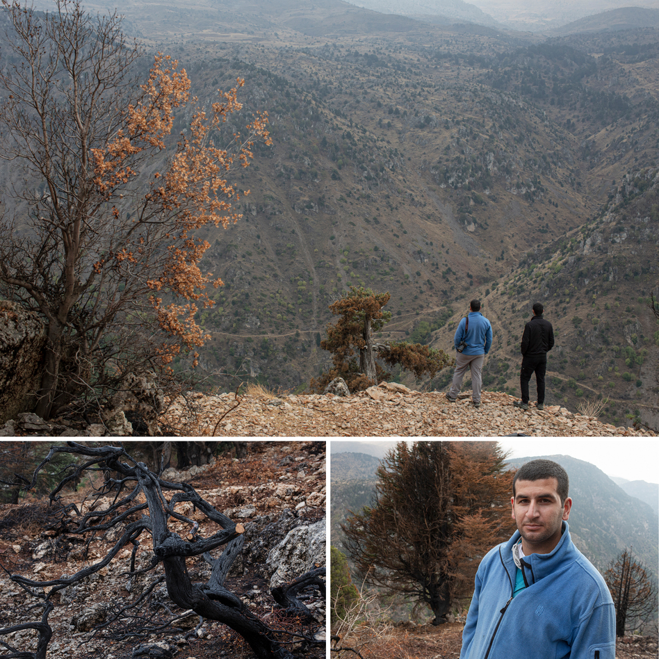 Khaled Taleb, 29, a conservationist who is the director and founder of Akkar Trail, and his brother Ali Taleb, 22, a botanist, look out over a valley from the site of a recent wildfire which burned a number of cedar trees, in the Mishmish forest. Left: A scorched juniper tree that was burned in a recent wildfire which also burned a number of cedar trees. Right: Khaled Taleb
