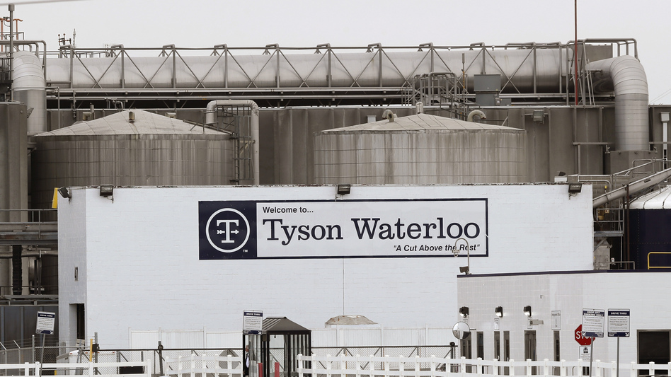 """A lawsuit filed by the family of a former Tyson employee who died of COVID-19 complications alleges company supervisors were instructed by high level officials to falsely deny the existence of """"confirmed cases"""" or """"positive tests"""" as early as March. (Charlie Neibergall/AP)"""