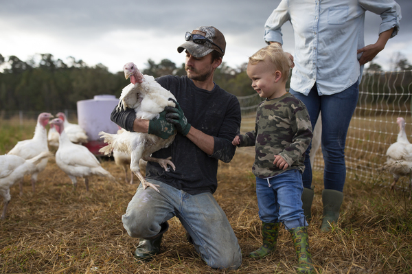 "Joe Shenk holds a turkey for his son, Mason, to pet in the open-air enclosure on their farm. ""They're not very smart, but they make up for that by being really friendly and interesting,"" Shenk said about the turkeys."