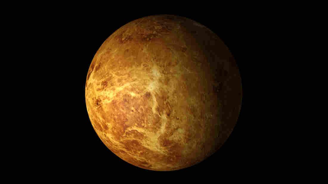 Venus from space