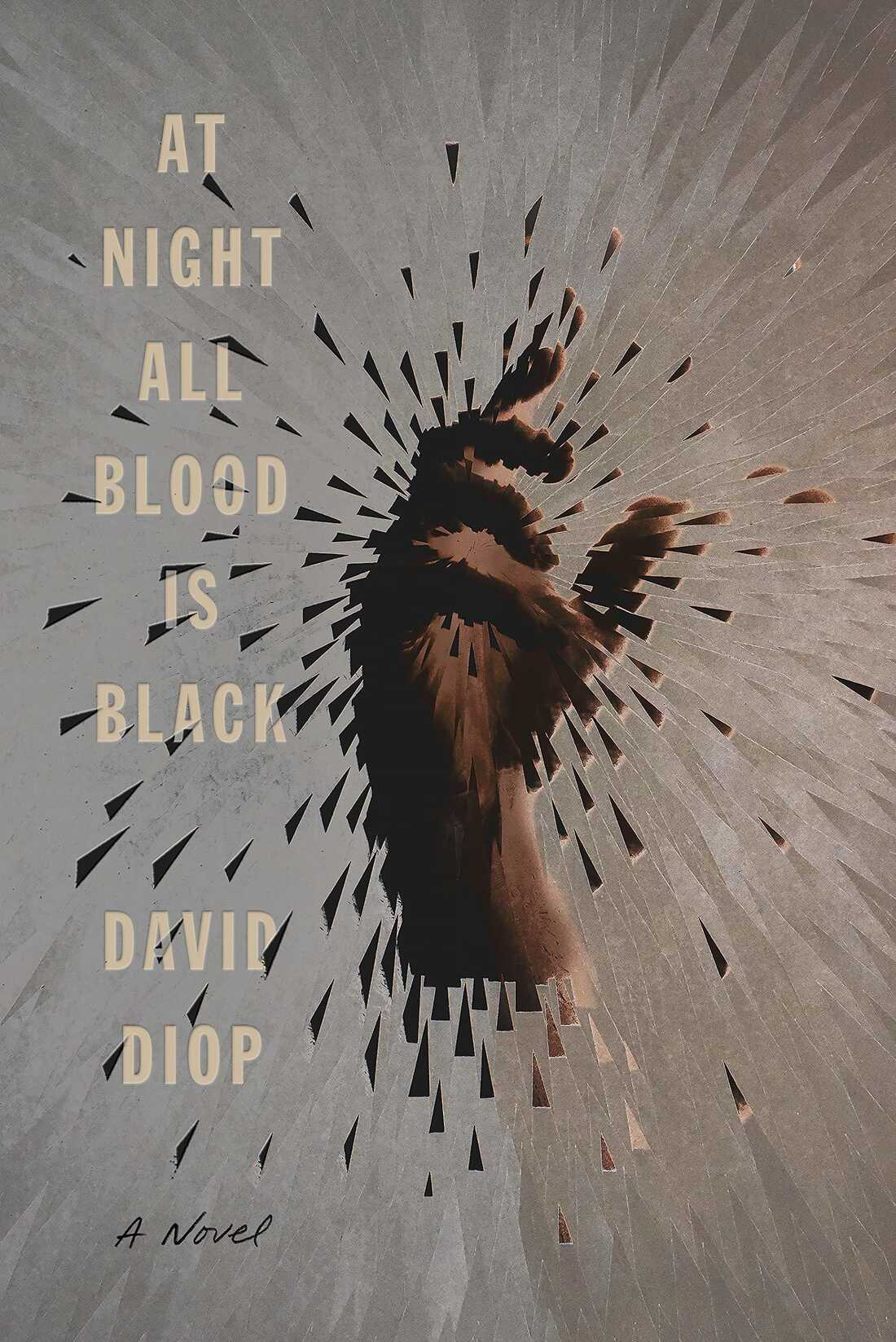 At Night All Blood is Black, by David Diop