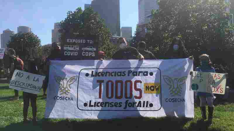 Pandemic Renews Debate Over Drivers Licenses for Undocumented Workers
