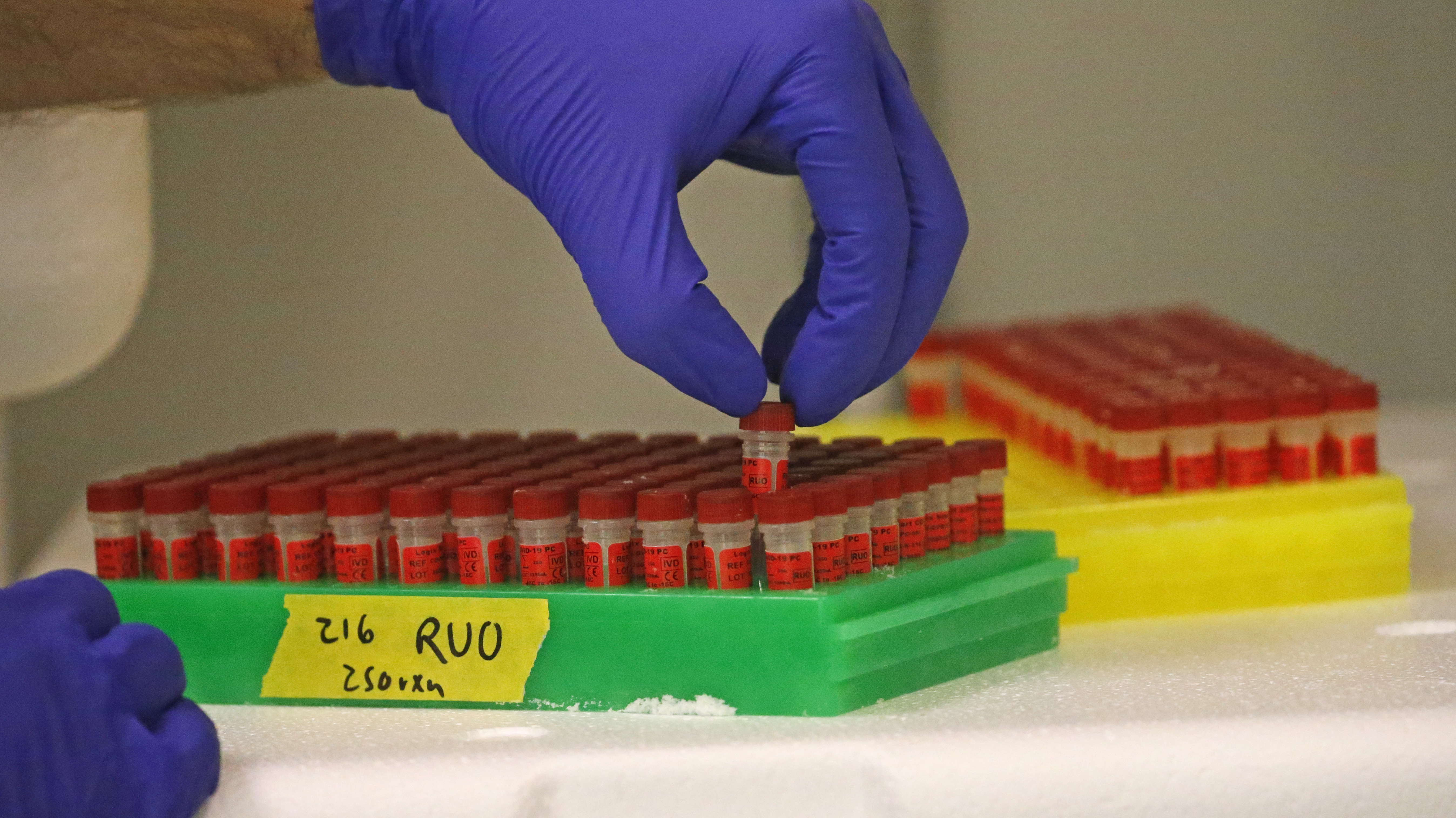 Stock Sales By Leaders At Coronavirus Testing Company Raise Legal Concerns