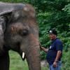 """""""他会是一头快乐的大象"""":Wet 描述了 Kavanagh 是如何获救的"""