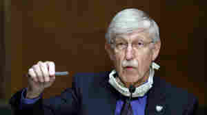 "NIH Director Tells Churches To Do The ""Altruistic, Loving Thing"" And Stay Closed"