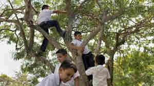 PHOTOS: Despite War And Violence, Kids Still Find 'Moments Of Playfulness'