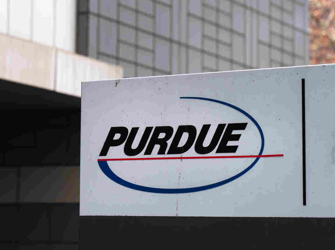 The corporate consulting giant issued a rare apology for its behind-the-scenes work with Purdue Pharma, maker of OxyContin.