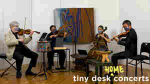 Borromeo String Quartet Celebrate Beethoven's 250th Birthday With A Tiny Desk