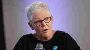 Biden To Name Gina McCarthy, Former EPA Chief, As Domestic Climate Coordinator
