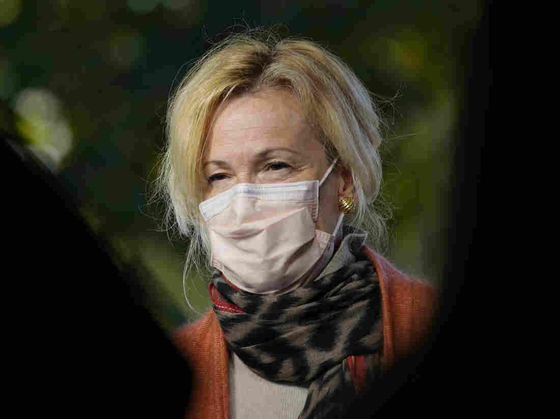 Dr Deborah Birx: White House virus expert quits over holiday travel