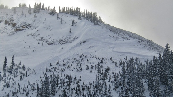 A skier was killed on Friday when he was buried in an avalanche in Colorado