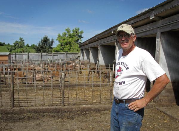 Ron Rosmann, shown here in 2011, raises hogs and grows crops organically near Harlan, Iowa.