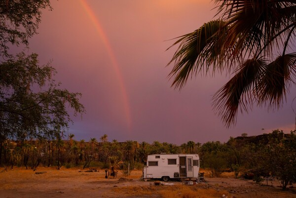 """Our """"campersito"""" — a space we use both for working and hosting guests — is wedged between the two trees that best exemplify this ecosystem: the mesquite and the palm tree."""