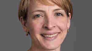 NPR CEO John Lansing Names Leora Hanser Chief Development Officer