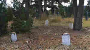 Fenn Treasure Seeker Pleads Guilty To Digging In A Yellowstone Cemetery