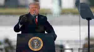 Can Trump Pardon Himself?