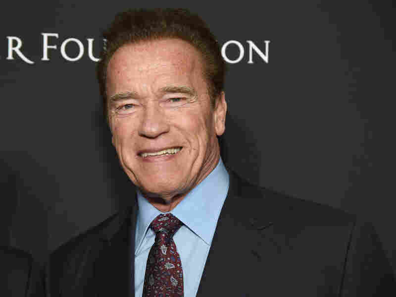 Schwarzenegger Invokes Kristallnacht as He Denounces Trump Over Supporters Violently Storming Capitol