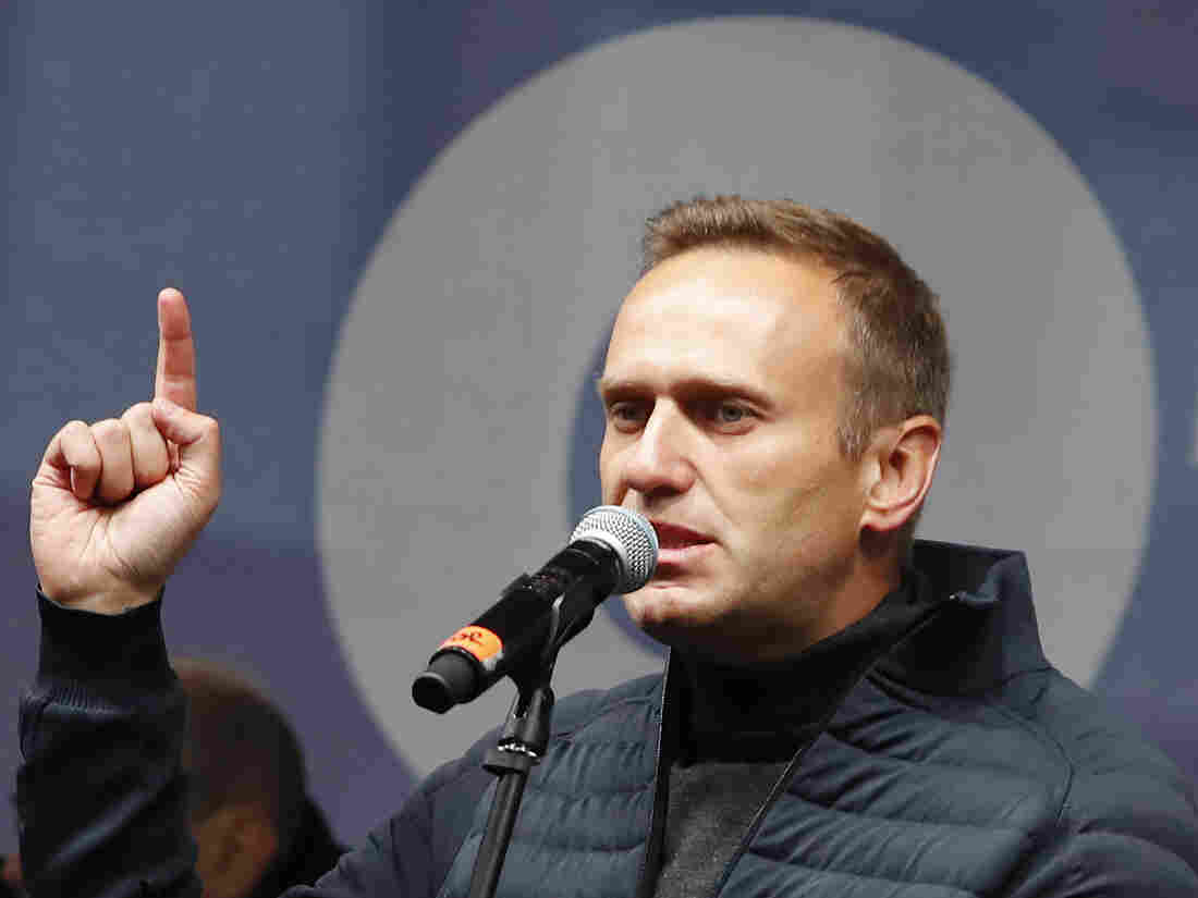 Kremlin critic Navalny announces return to Russian Federation